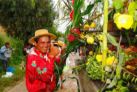 Man decorating a truck with local produce before Carnival parades, San Lorenzo, Tarija Department, Bolivia