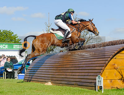 Sam Watson and HORSEWARE BUSHMAN - Cross Country - Mitsubishi Motors Badminton Horse Trials 2013.