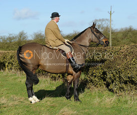 The Cottesmore Hunt at Home Farm 2/2