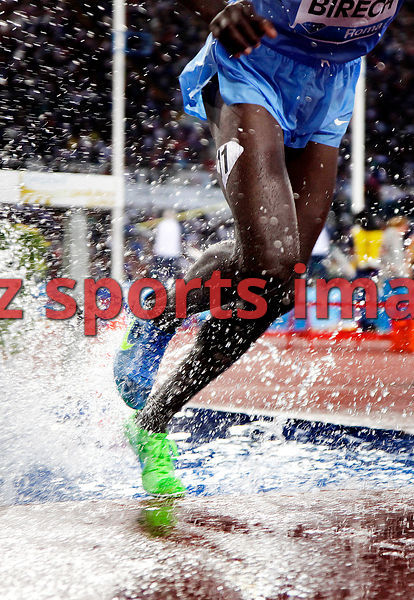 1500mSC. at the 2012 Rome Golden Gala - Rome Diamond League