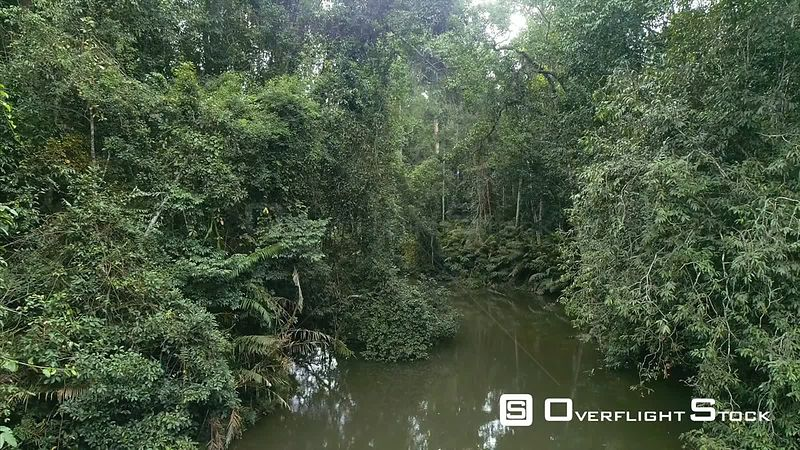 Drone Video of Stream in Khao Yai National Park Jungle Wilderness Thailand