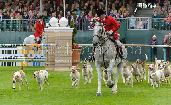 - The Parade of Hounds,  Land Rover Burghley Horse Trials 2013.