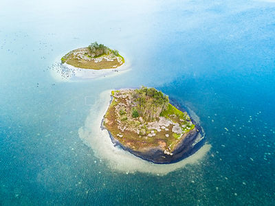 Two islands almost identical with a small clump of trees in their centre surrounded by coastal heath, rock and sand. NSW Aust...