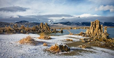 Winter Morning at Mono Lake