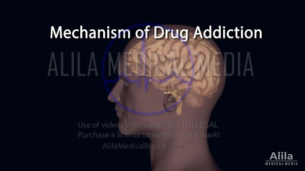 Mechanism of DRUG addiction in the brain NARRATED animation.