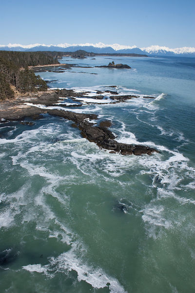 Aerial view of coastline near Sitka, sea covered in Pacific herring (Clupea pallasii) spawn, South East Alaska, March 2007
