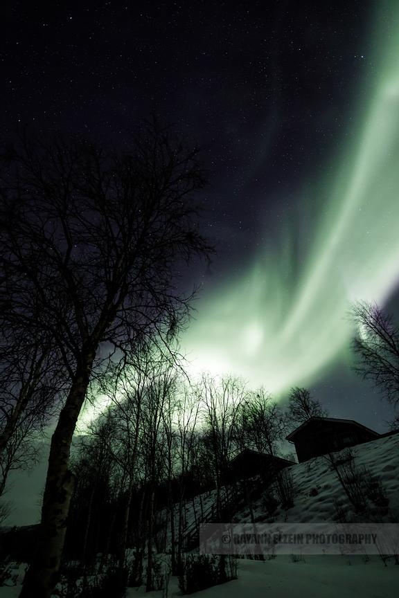 Northern lights above the cottages of Aurora Holidays in Utsjoki