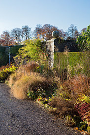Mixed grasses and perennials in border by wall