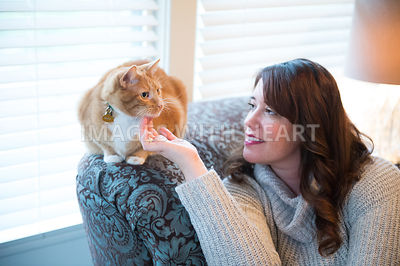 Female human stroking chin of orange tabby