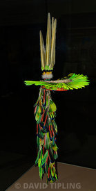 Head dress of parrot feathers from the Kofan Ecuador South America