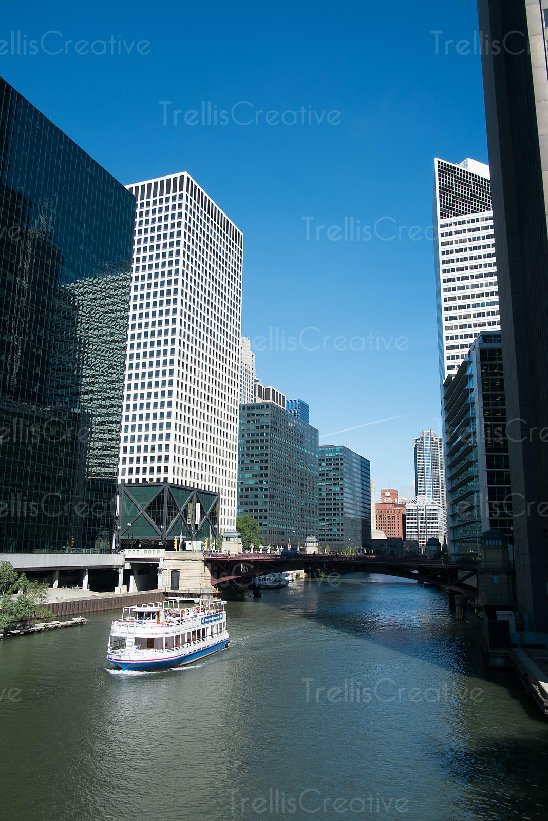 View of boat cruising in the river along the buildings, Chicago, USA