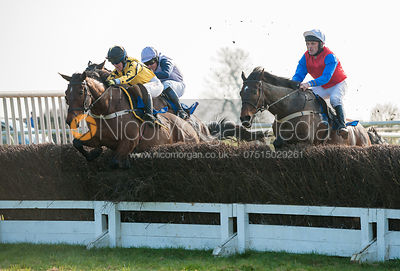 Ungaro (Heather Kemp) - Mixed Open - Belvoir Hunt Point to Point 24/3/12