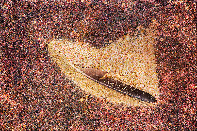 Windswept Sand Caught in a Feather on Sandy Surface with Garnet