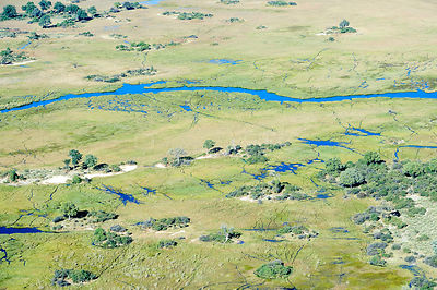 Aerial view of the Okavango delta with a channel meandering through the swamp and islands, Botswana, Africa