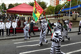 Zebras parade past the remains of Eduardo Abaroa, Plaza Avaroa, La Paz, Bolivia