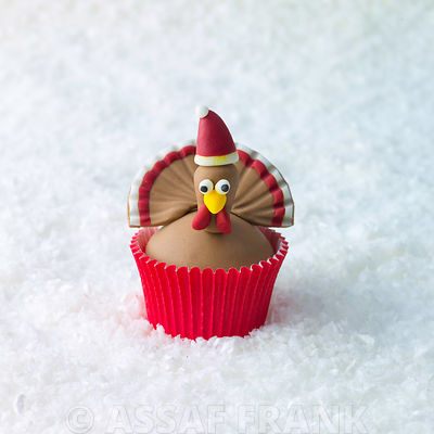 Christmas Turkey cupcake on snow