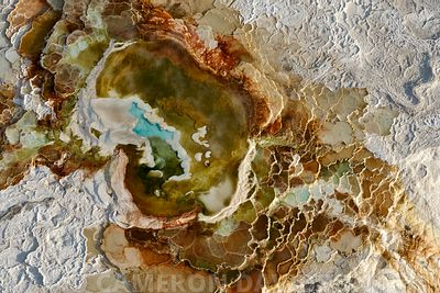 Aerial photo in Midwinter of Yellowstone Hot springs and fog