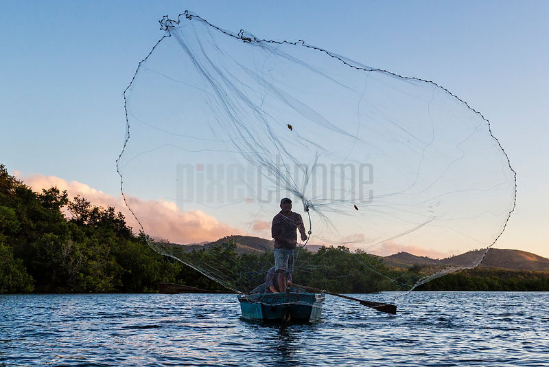 Seine Net Fisherman at Dawn