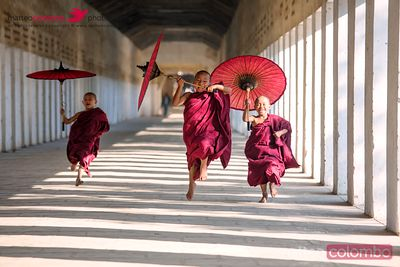 Novice monks with umbrellas running at temple, Bagan, Myanmar