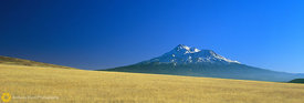 Mt. Shasta & Hill