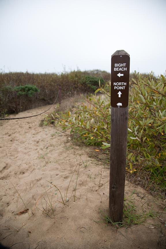 Directional sign on wooden post at beach, Ano Nuevo State Reserve, California