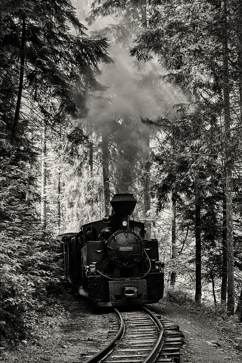 Mocanita Steam Train Climbing a Hill