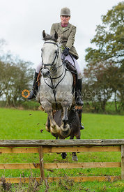 Monica Tebbutt-Wheat - The Cottesmore Hunt at Tilton on the Hill, 9-11-13