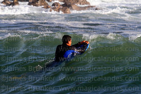 Surfer swimming out though waves in Pacific Ocean, Arica, Region XV, Chile