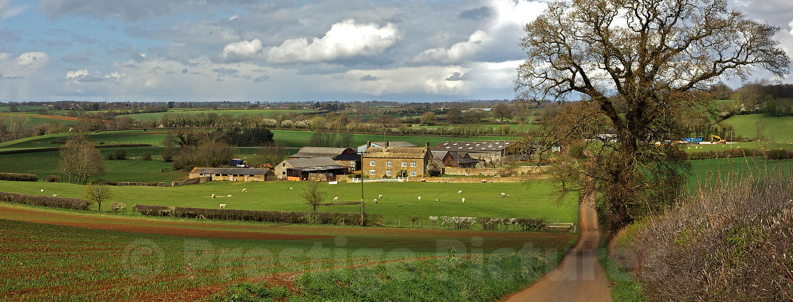 English Countryside Panorama