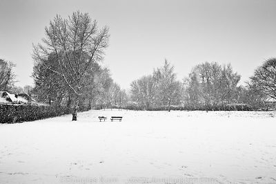 Limited edition Giclée fine art print of snow covered park benches and in a snowy park