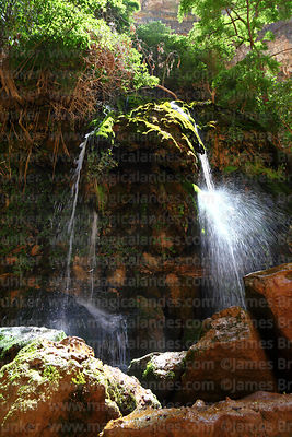 El Vergel waterfall / natural spring in Torotoro Canyon, Torotoro National Park, Bolivia