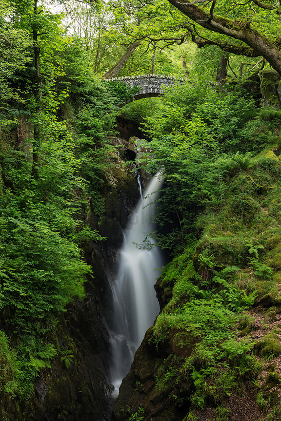 Waterfall Bridge at Aira Force