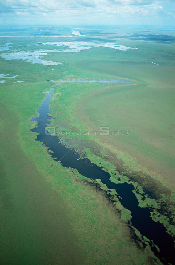 Aerial view of old course of Kazawari river, Papua New Guinea