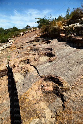 Sauropod dinosaur footprints in limestone strata in dry river valley, Torotoro National Park, Bolivia