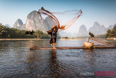 Old chinese fisherman throwing net, China