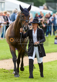 Emilie Chandler and COOPERS LAW at the trot up, Land Rover Burghley Horse Trials 2018