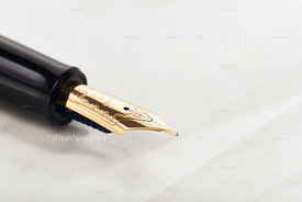 Detail of gold feather in diagonal fountain pen
