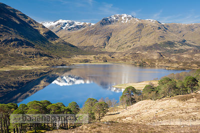Glen Affric - BP2977B