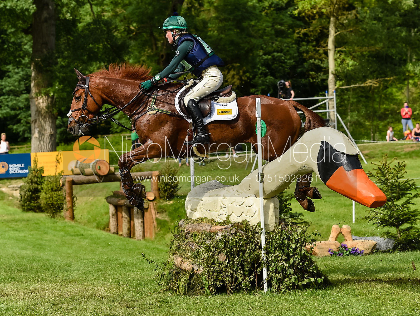 Eliza Stoddart and DICK O MALLEY, Equitrek Bramham Horse Trials 2018