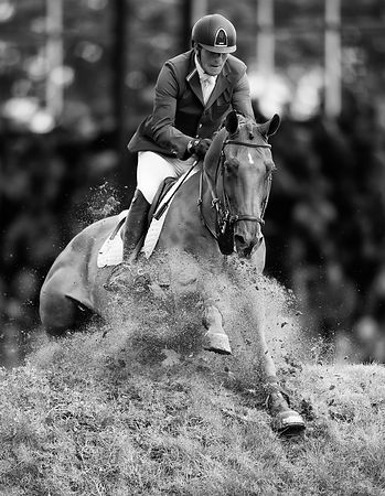 The 2014 Hickstead Derby Meeting