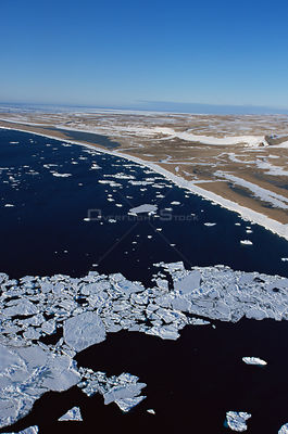 Aerial of sea ice near floe edge, Admiralty Inlet, Canadian High Arctic, June 2000