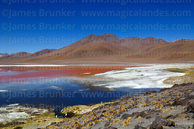 Borax deposits in Laguna Colorada and Cerro Negro, Eduardo Avaroa Andean Fauna National Reserve, Bolivia