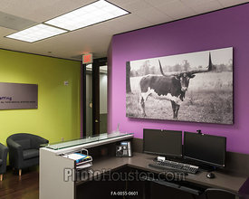 Photos displayed in office art with float framing
