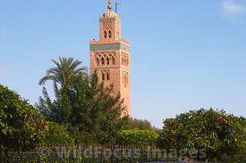 Koutoubia mosque minaret taken from a caleche, Morocco; Landscape