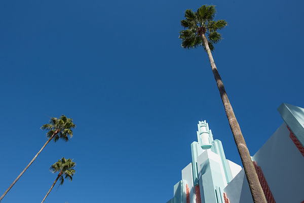 Art Deco and Palm Trees at Disney's Hollywood Studios