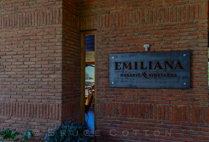 Emiliana Vineyard
