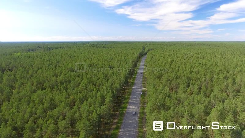 Drone Video of a Road Cutting Througha Forest Estonia
