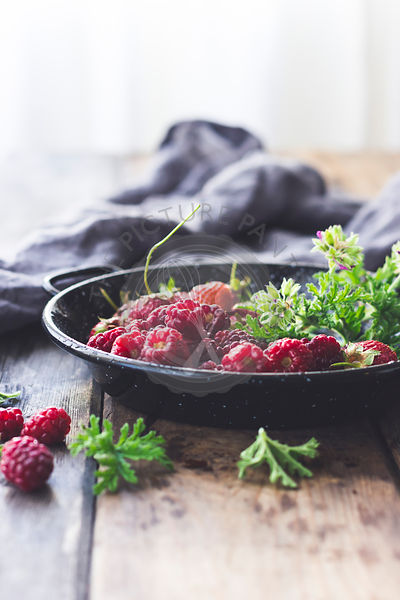 Summer Berries in a Pie Pan with Rose Geranium