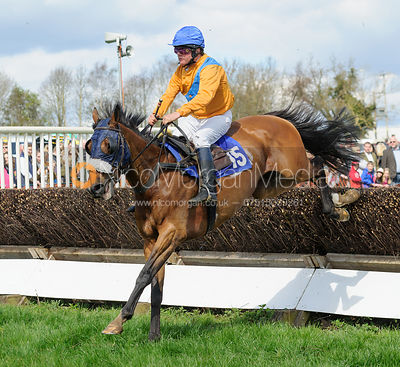 Patrick Millington and MARINA BLUE - Mares and Fillies