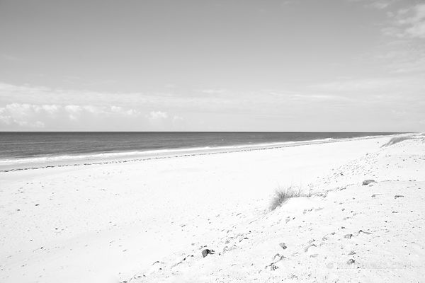 OCRACOKE ISLAND BEACH CAPE HATTERAS NATIONAL SEASHORE OUTER BANKS NORTH CAROLINA BLACK AND WHITE